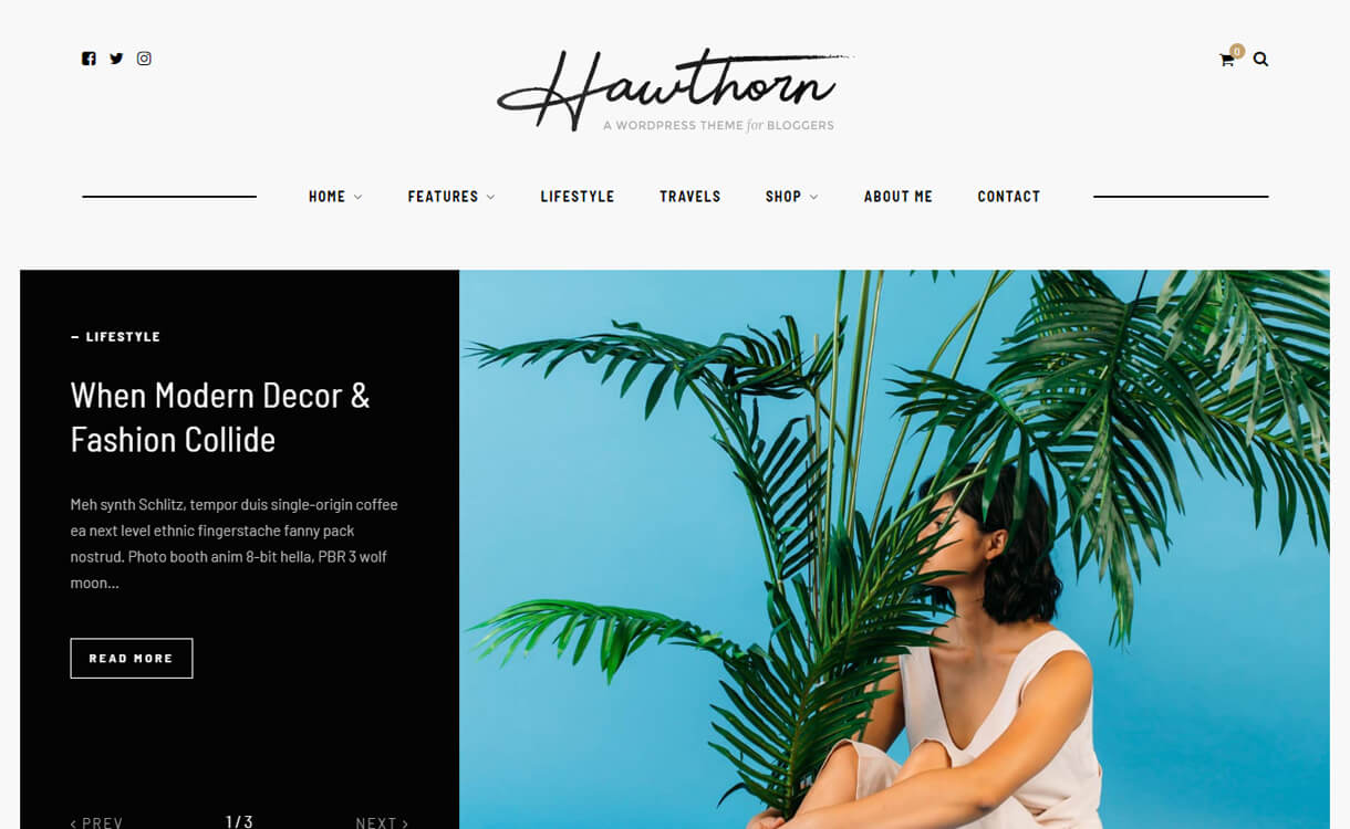 hawthron wordpress blog the - 30+ Best Premium WordPress Blog Themes 2020