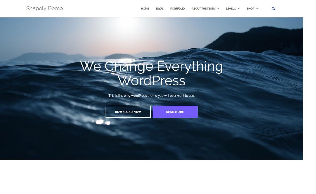 Shapely-Free WordPress Landing Page Theme