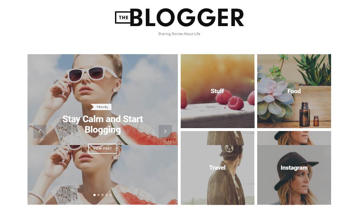 the blogger - 30+ Best Premium WordPress Blog Themes 2019