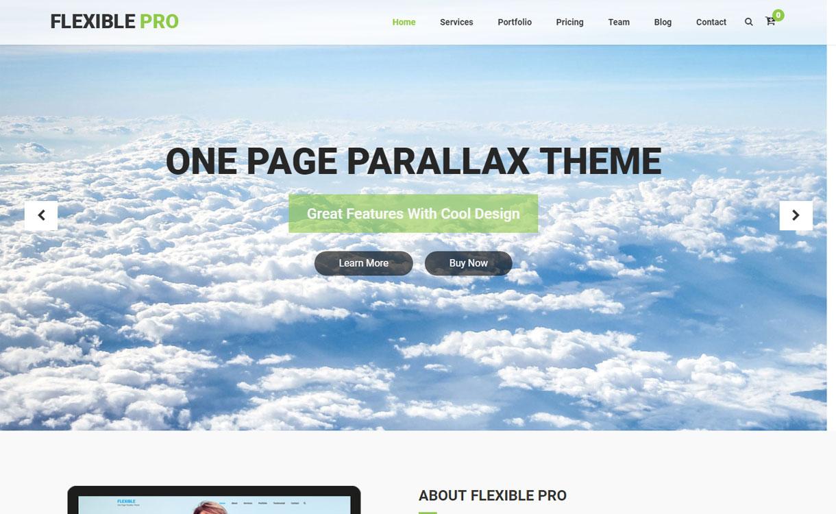 Flexible Pro - Premium Multipurpose WordPress Theme