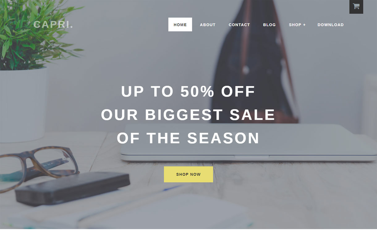 Capri Pro - Premium Ecommerce WordPress Theme