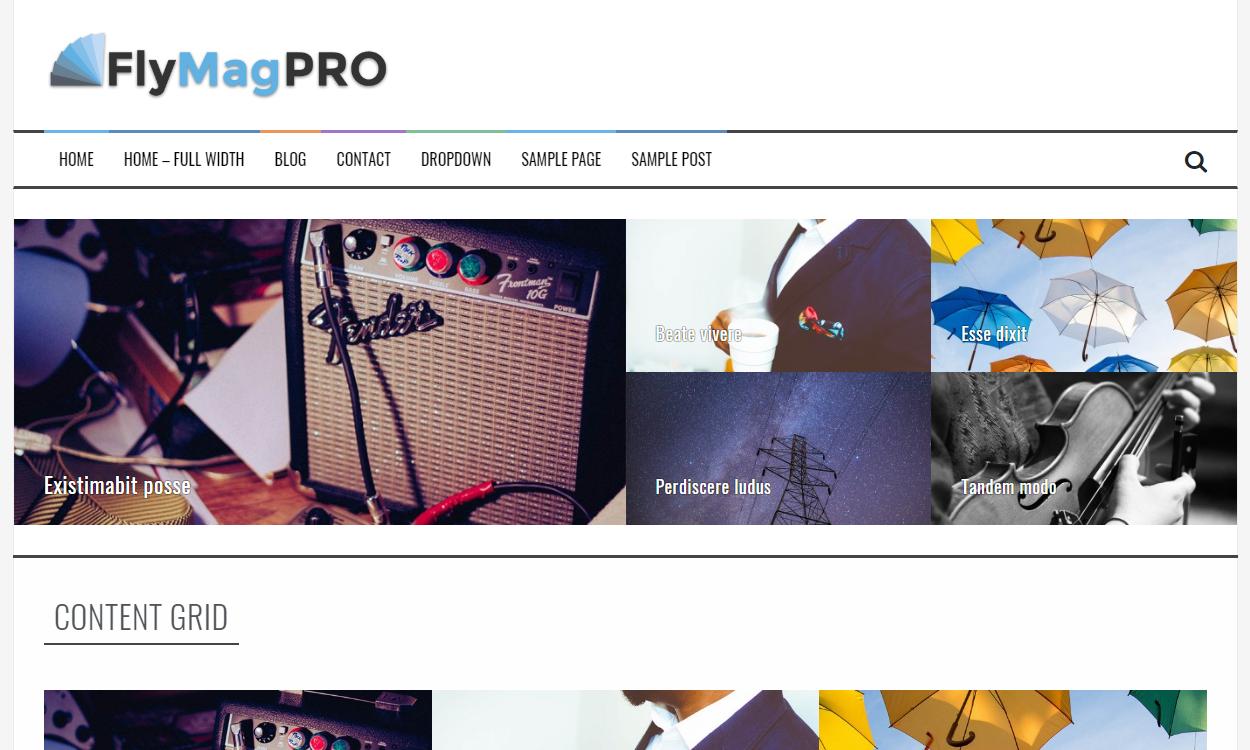 flymag pro - 21+ Best Premium WordPress News/Magazine/Editorial Themes 2019