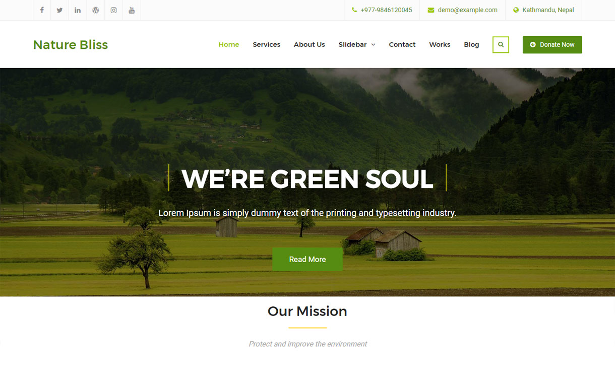 Download Nature Bliss - Free Business WordPress Theme