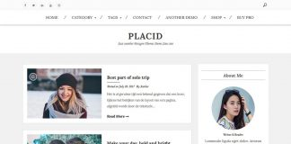 Placid - Free WordPress Magazine Theme