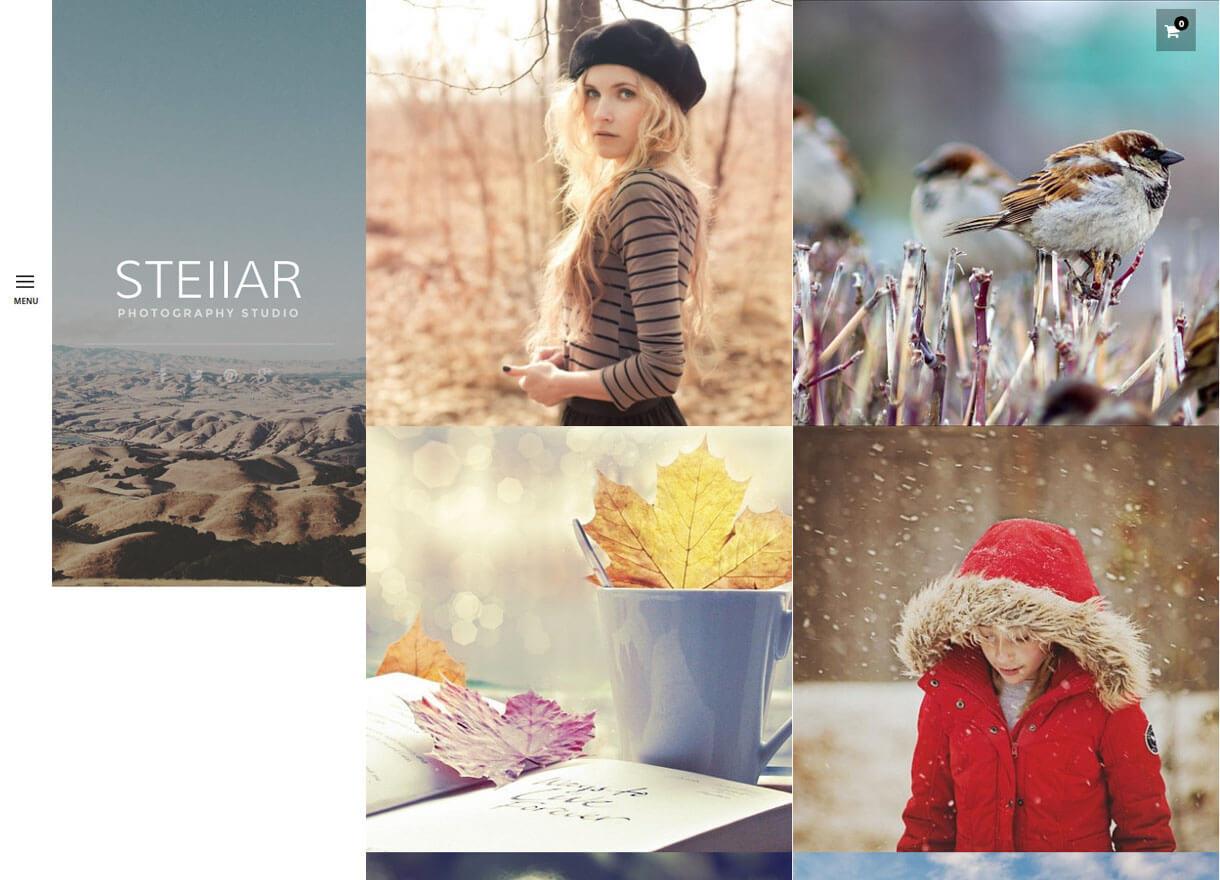 Stella-Best Premium WordPress Photography Themes