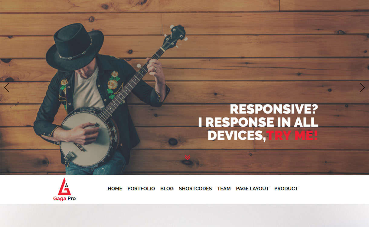 Gaga Pro One Page Premium WordPress Theme