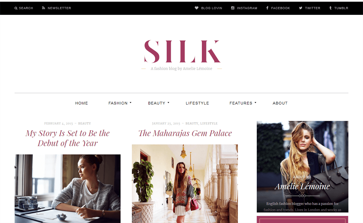 Silk Lite-Free Magazine WordPress Theme