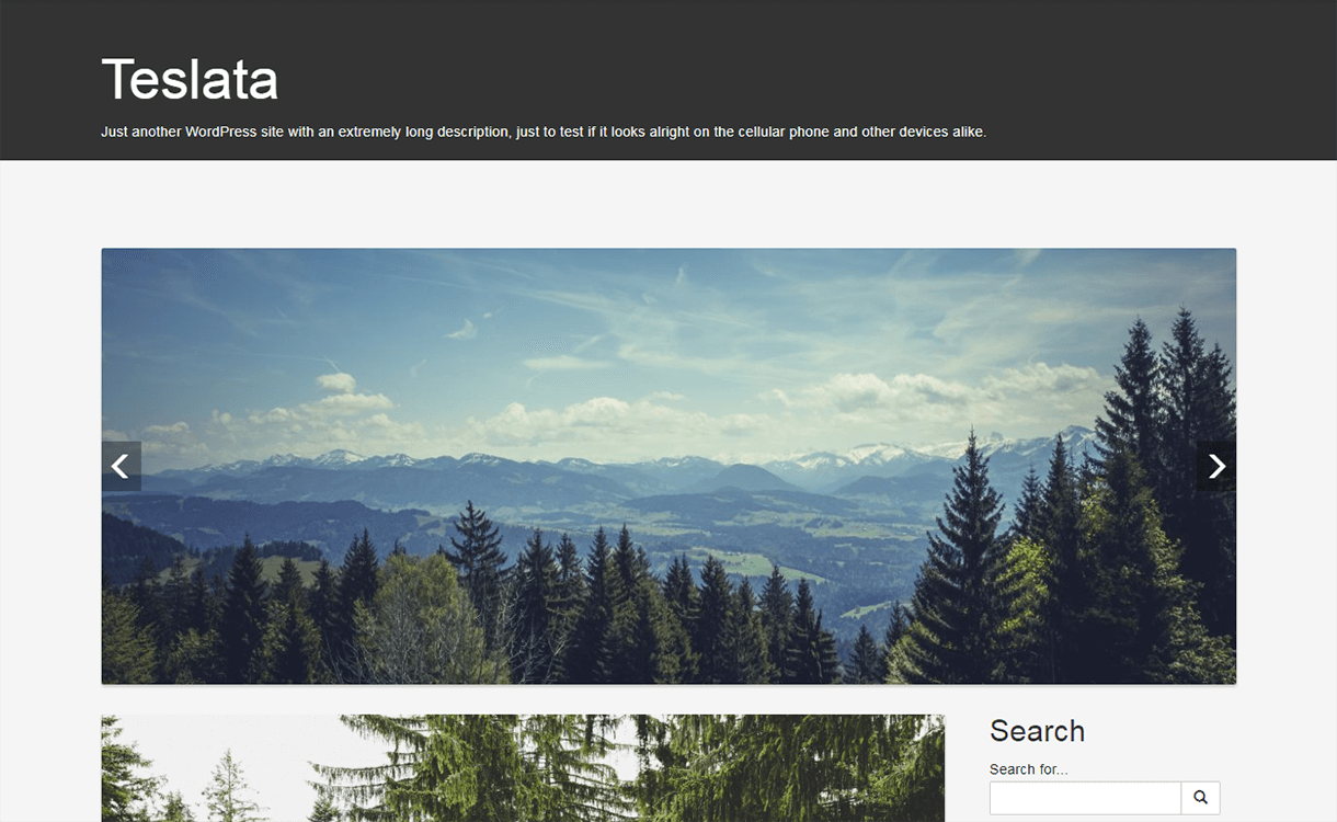 teslata wordpress material design 1 - 15 Best Free Material Design WordPress Themes for 2019