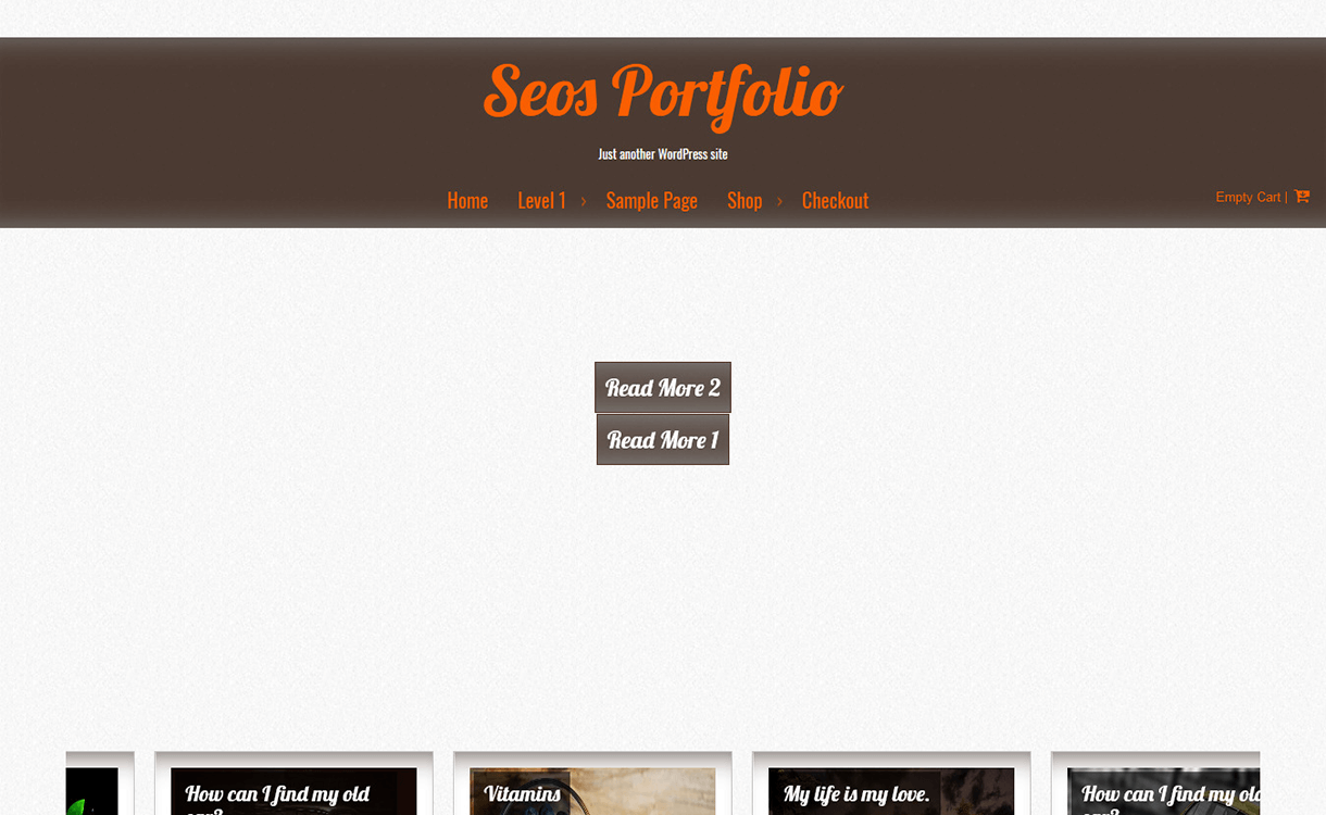 seos portfolio free wordpress theme - 15 Best Free WordPress Portfolio Themes For 2019