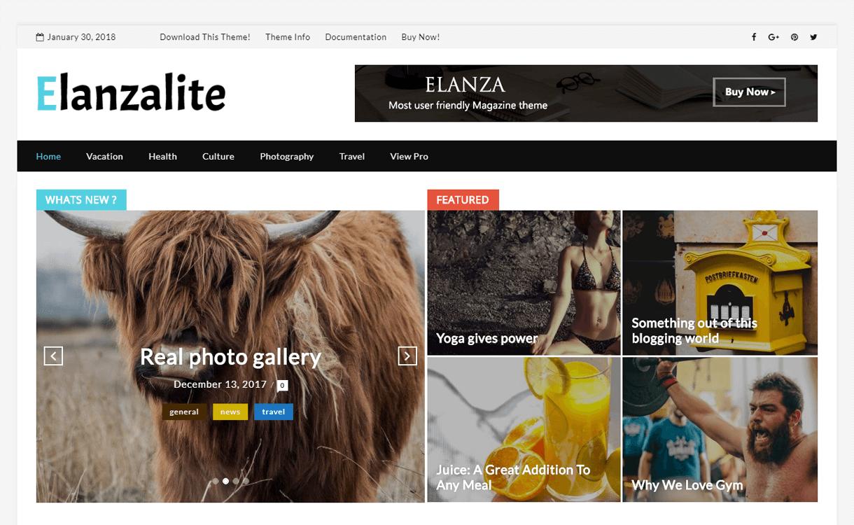 ElanzaLite-Best Free WordPress Theme January 2018