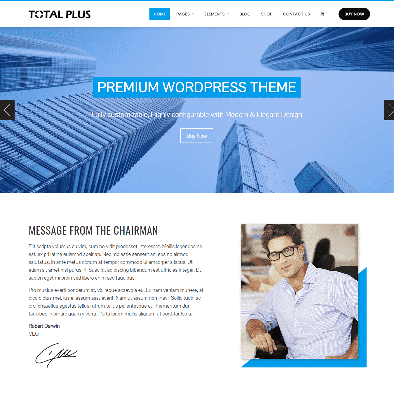 total plus WordPress theme