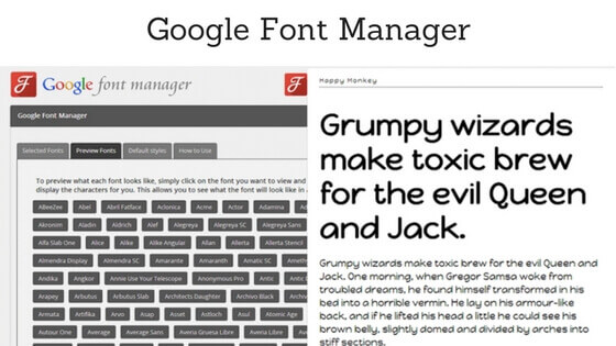 Google Font Manager - Choose Typography for WordPress Website