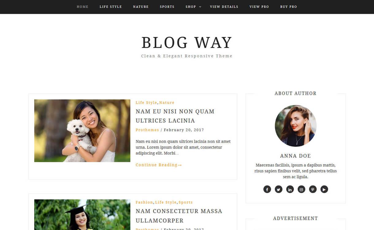 blog way best free blog themes for wordpress - Free, Elegant and Best Blog Themes of WordPress For 2019