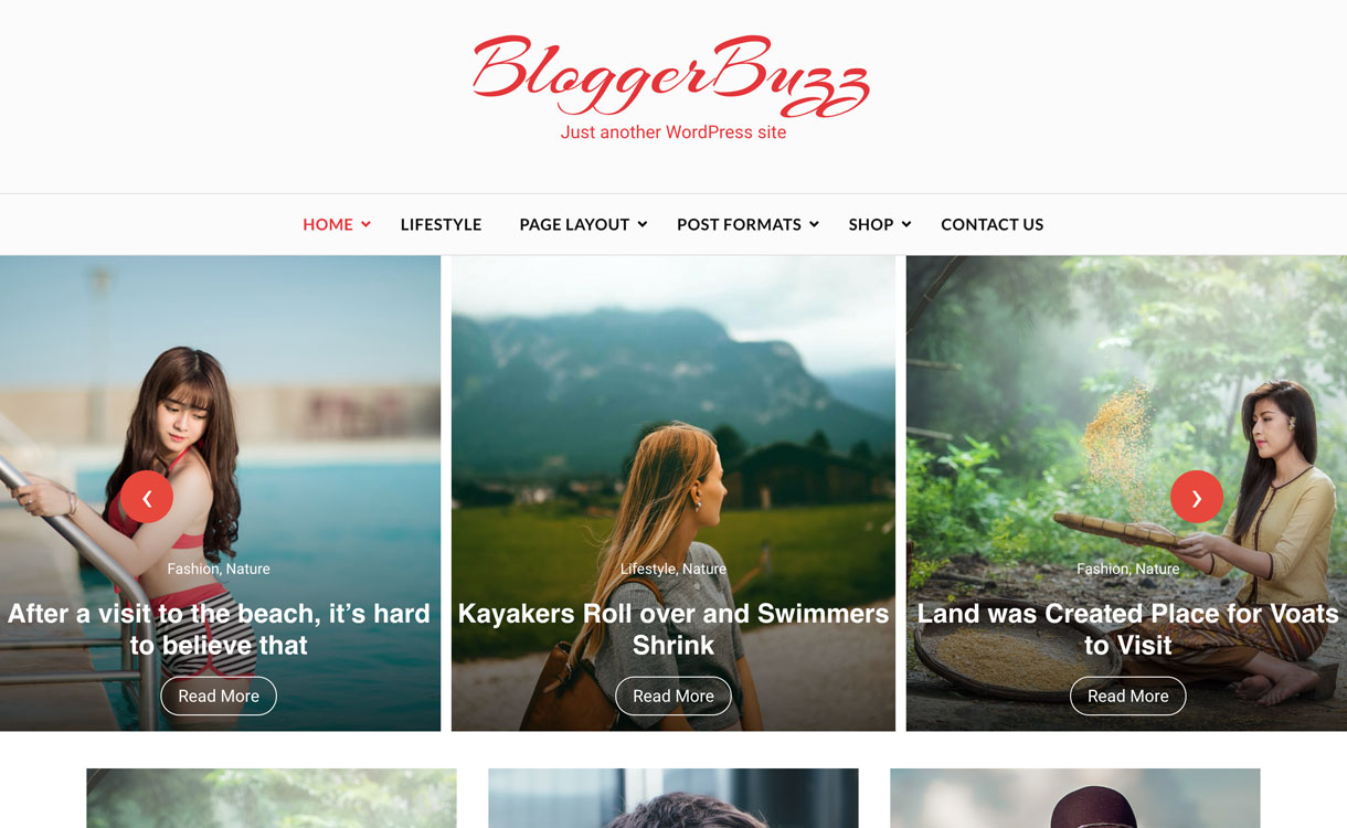 bloggerbuzz artical banner image - 30+ Best Free WordPress Blog Themes for 2020