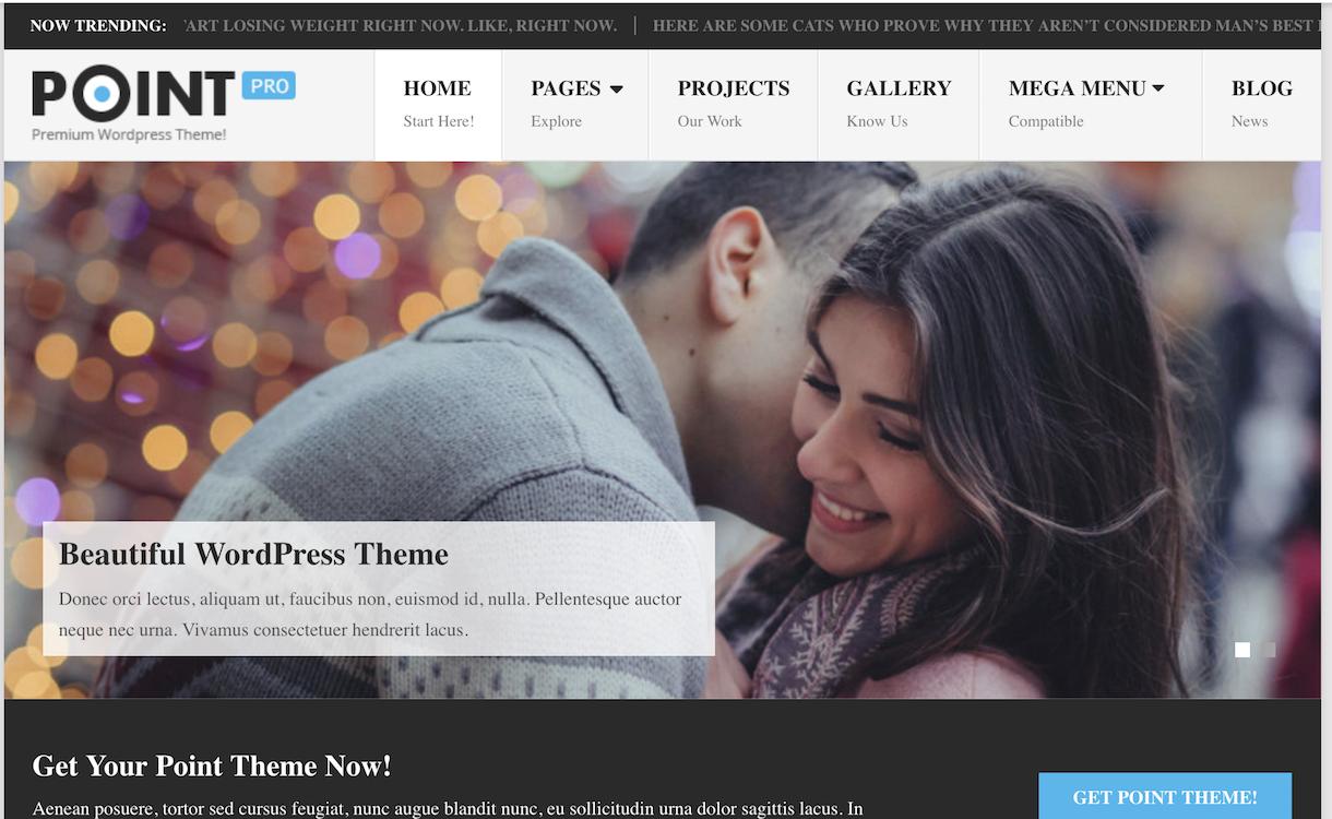 PointPro - WordPress Theme