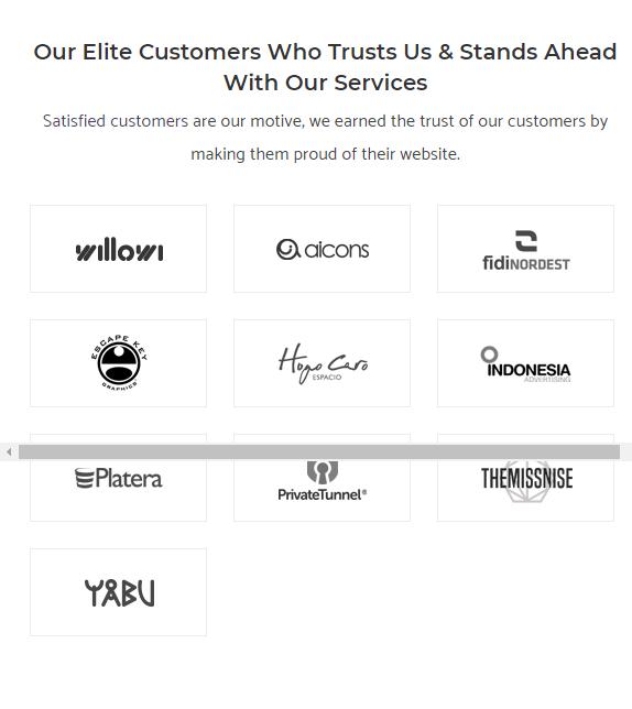 WP Team Support WordPress Customization Portfolio