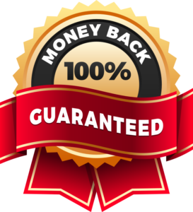Kinsta Hosting Money Back Gurantee - Eleven2 - Managed WordPress Hosting