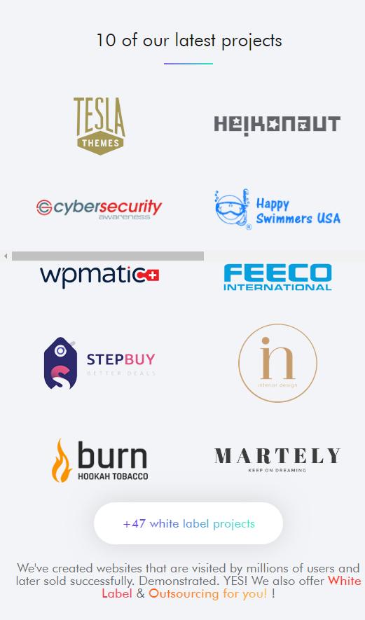 MobiTeam WordPress Service Clients Portfolio