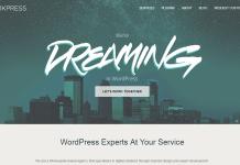 WerkPress-Customization-Theme