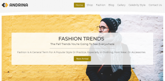 Andrina - Premium Fashion WordPress Theme