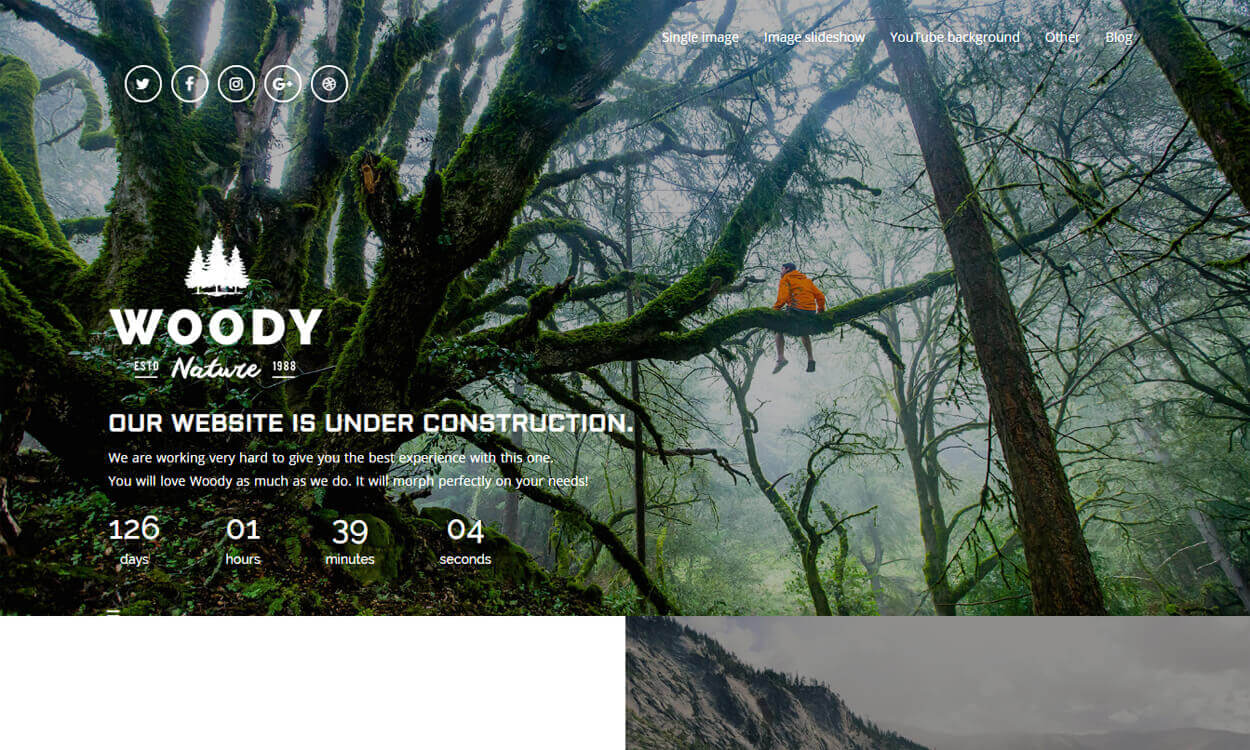 woody - 10+ Best Coming Soon and Under Maintenance WordPress Themes and Templates(Premium Version)