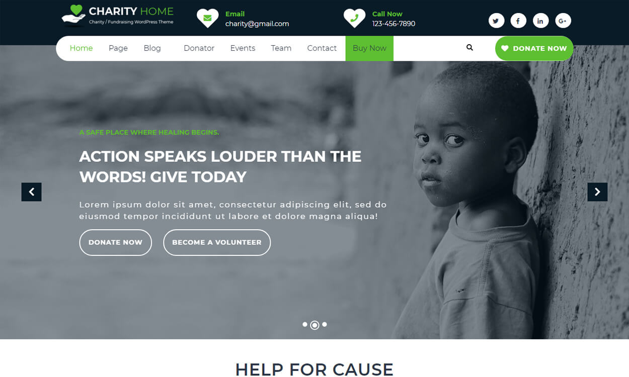 Charity Fundraiser - Best Free WordPress Themes August