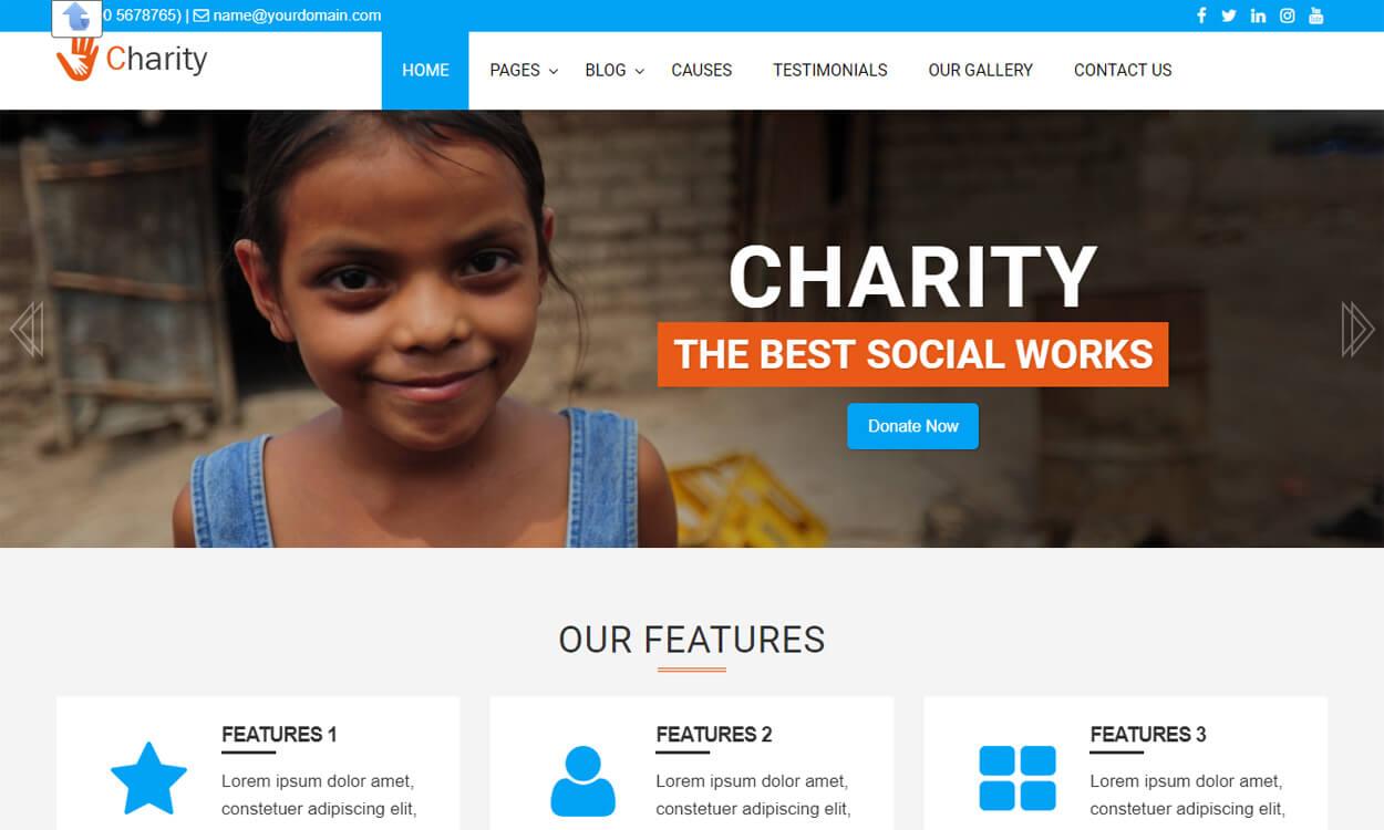 LZ Charity Welfare - Best Free WordPress Themes August