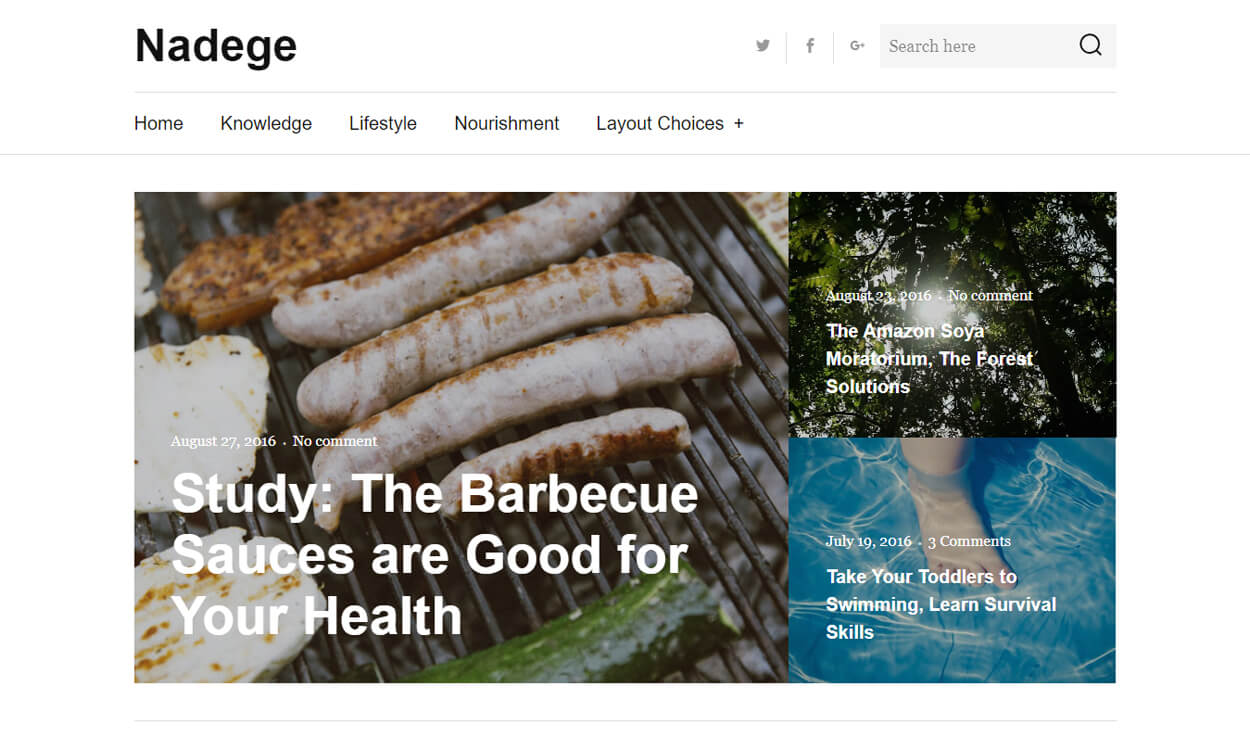Nadege - Best Free WordPress Themes August