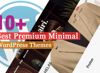 Best Premium Minimal WordPress Themes