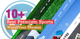 Best Premium Sports WordPress Themes