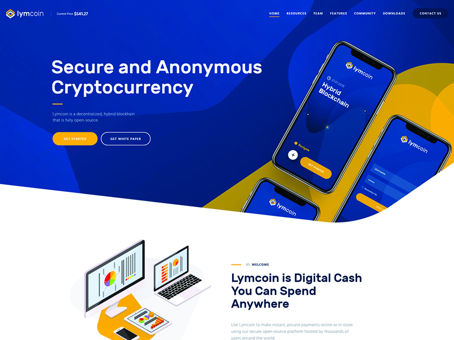 Lymcoin Cryptocurrency ICO WordPress Theme - Switching to the Leading WP Editor with 20 Gutenberg Compatible WordPress Themes
