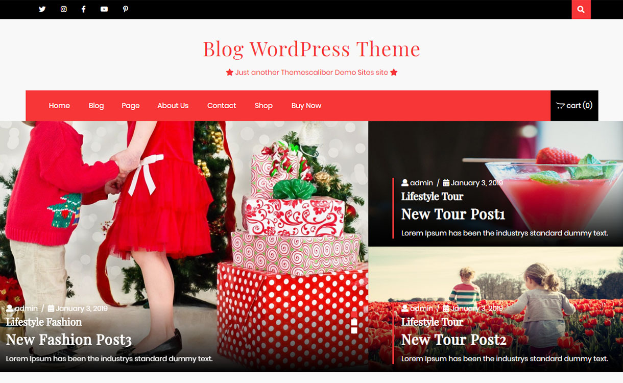 advance-blogging-pro-best-free-lifestyle-wordpress-theme