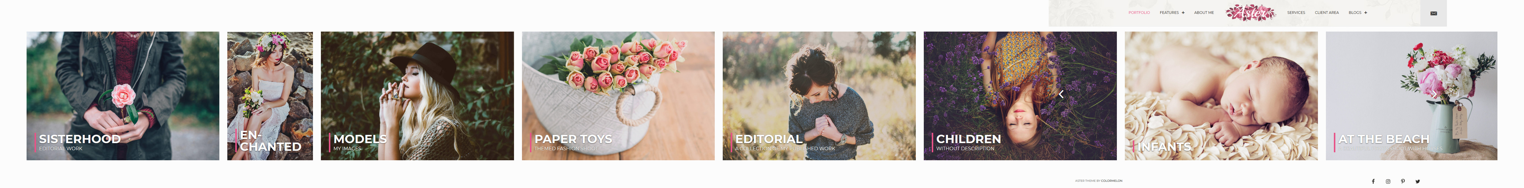 aster best premium feminine wordpress theme - 10+ Best Feminine WordPress Themes (Premium Version)
