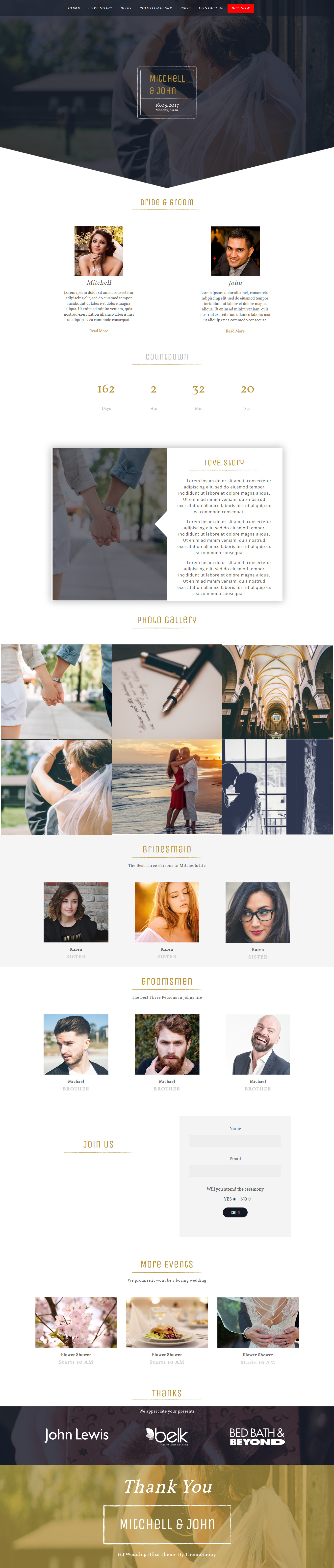 bb wedding bliss best free feminine wordpress theme - 10+ Best Free Feminine WordPress Themes