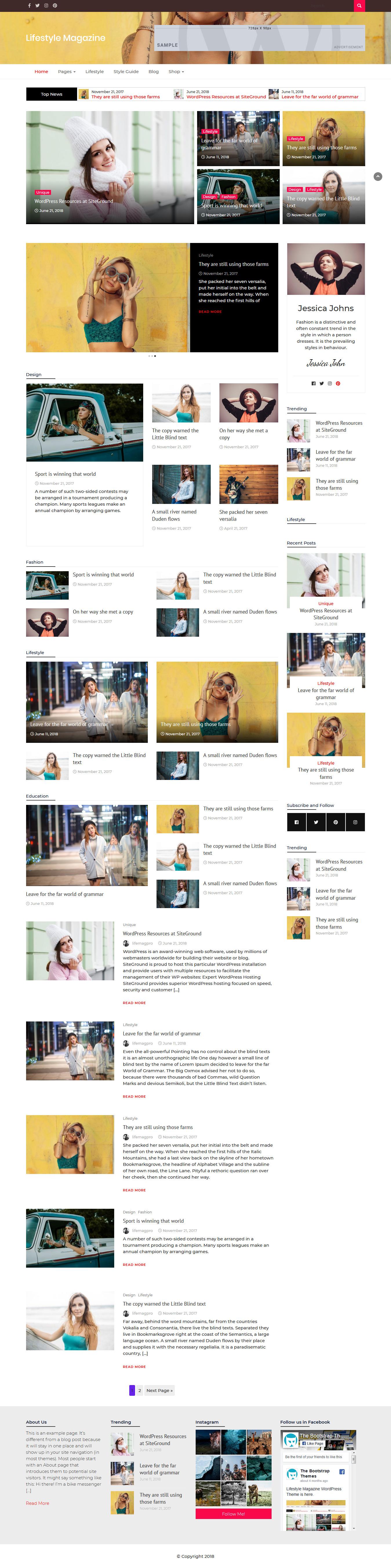 lifestyle magazine best free feminine wordpress theme - 10+ Best Free Feminine WordPress Themes