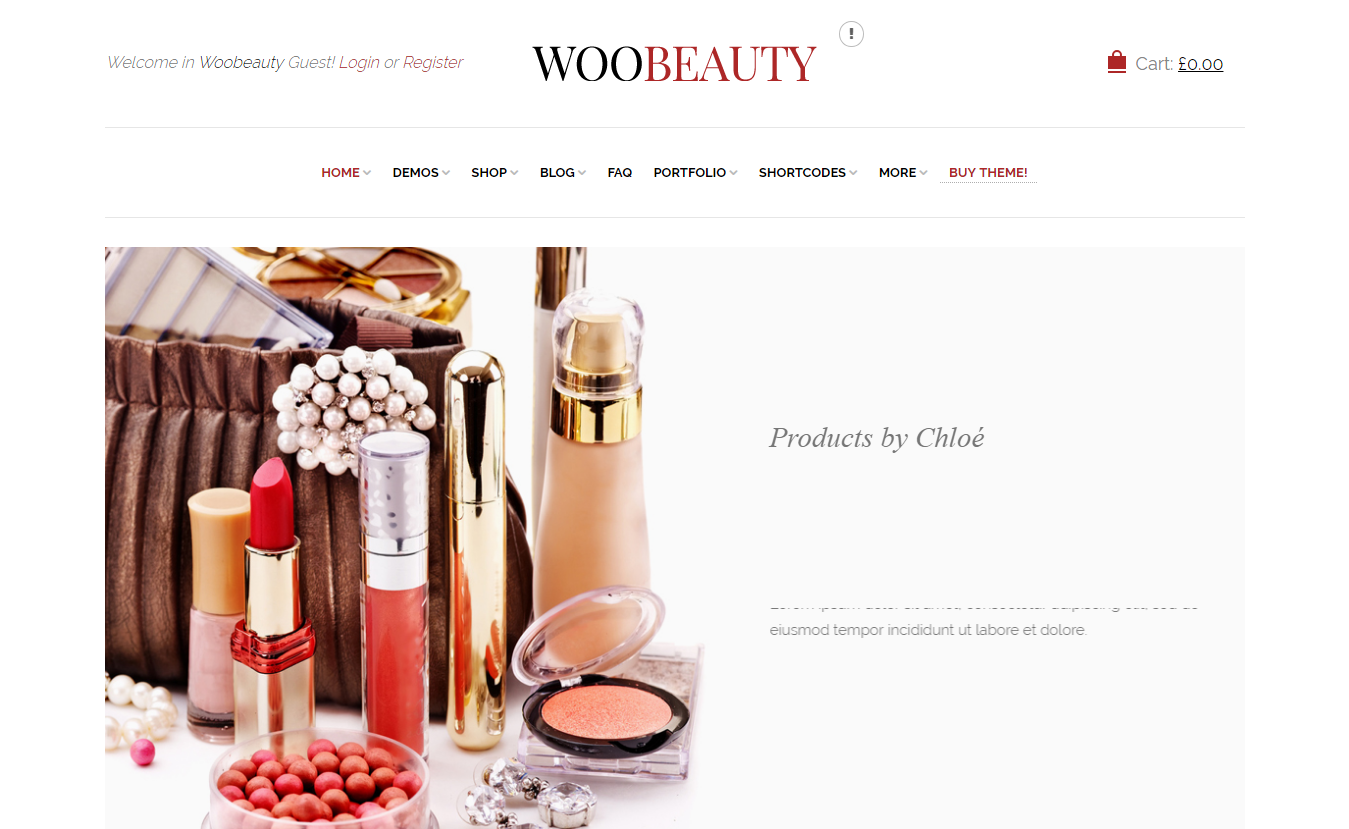 10+ Best Premium Retail Shop WordPress Themes