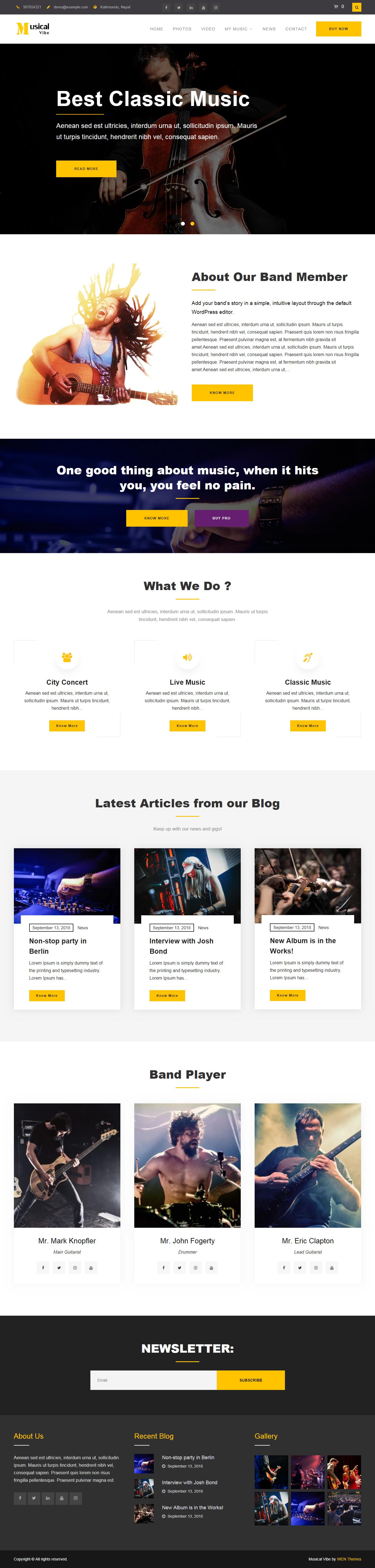 Music Vibe - Best Free Video and Music WordPress Theme
