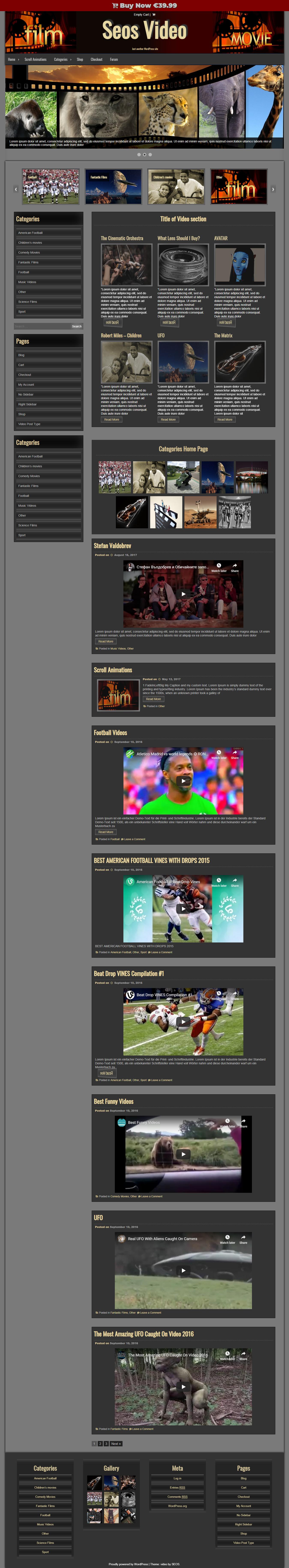 seos video best free video and music wordpress theme - 10+ Best Free Video and Music WordPress Themes