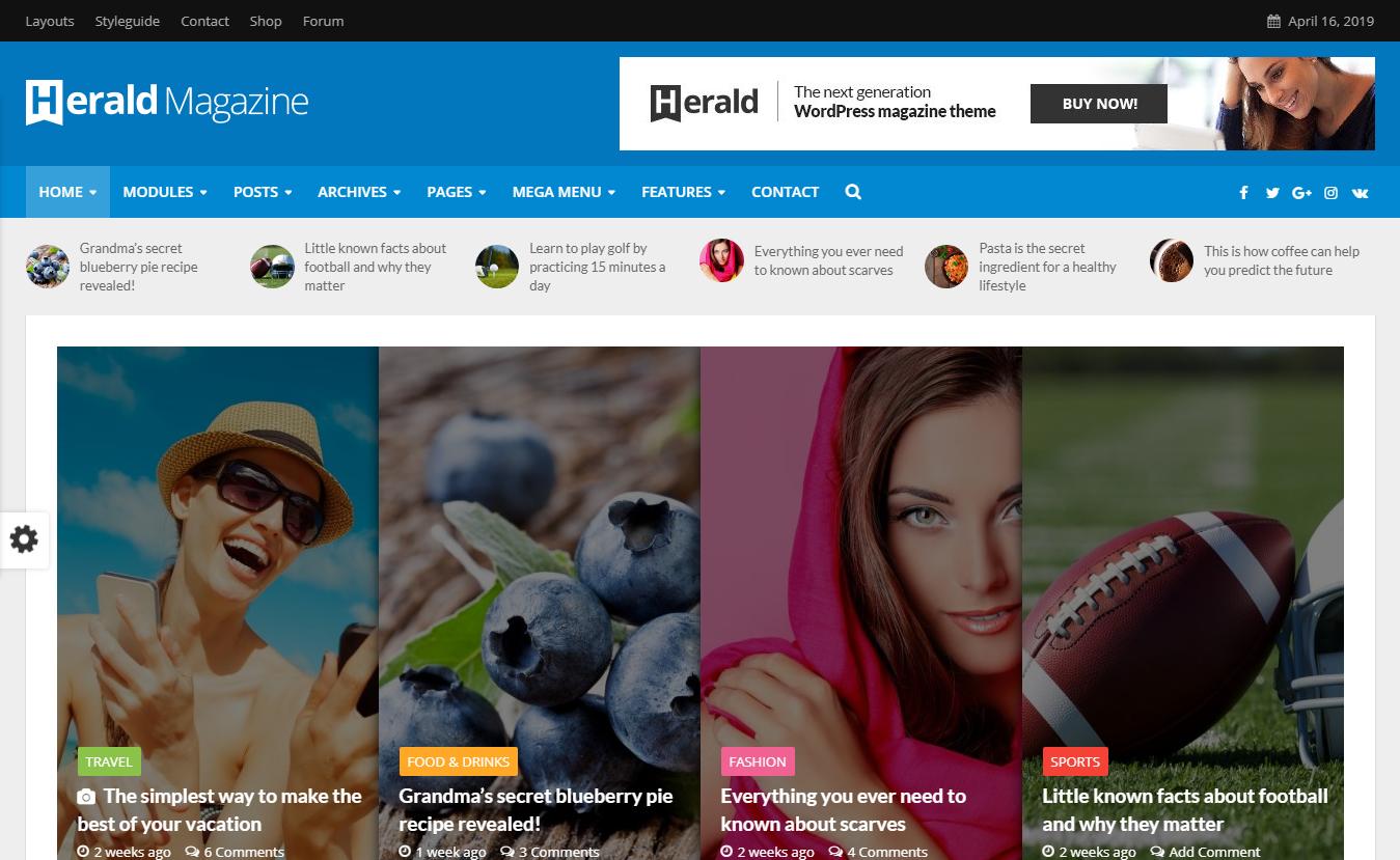 10+ Best Premium Review WordPress Themes