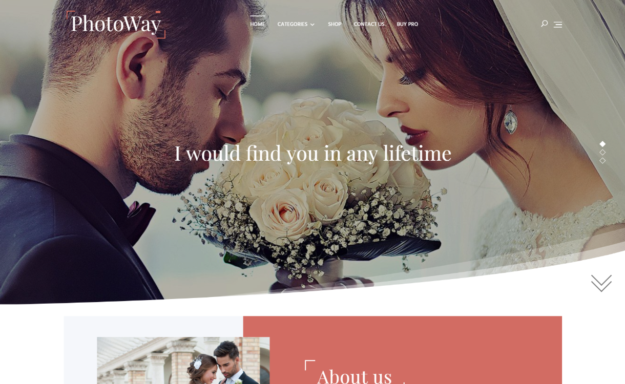 photoway 1220X750 - 25+ Best Free Photography WordPress Themes & Templates 2020