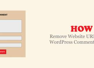 Remove Website URL from WordPress Comment Form